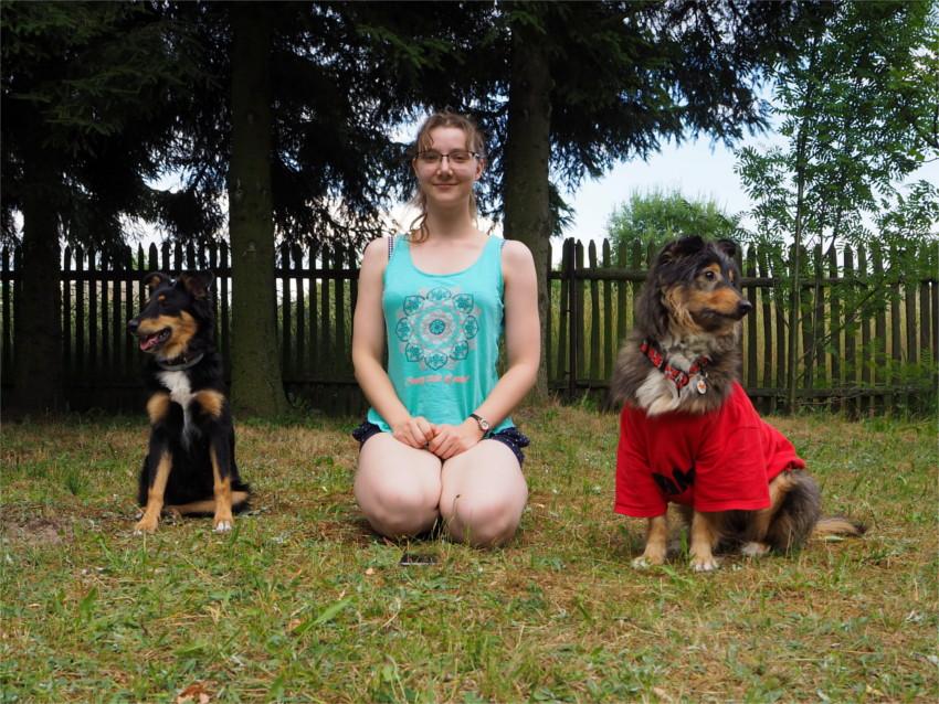 4 lata, pies, psy ,blog, konkurs