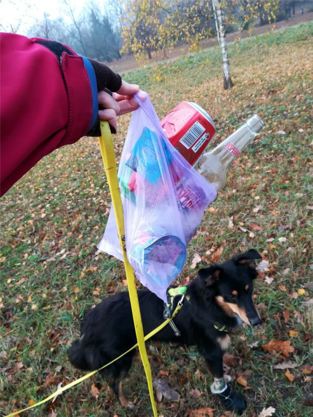 #śmieciwłapy, #zabierz5zlasu, nie śmiecimy, śmieci, zbierz śmieci, anty-śmiecing, pies, psy, spacer z psem, spacer z psem w lesie