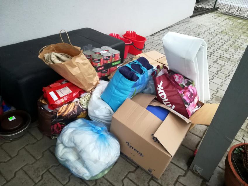 podsumowanie zbiórki, schornisko w Gaju, pies, psy, adoptuj, adopcja,