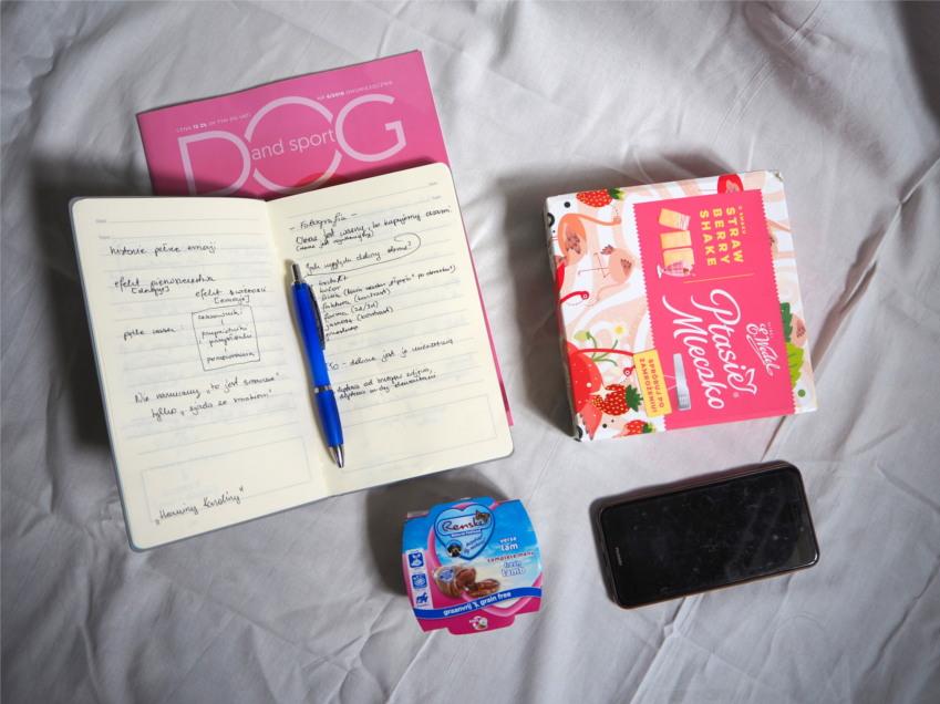 warsztaty dla blogerów, psi influencer, dog bloger, pies, psy