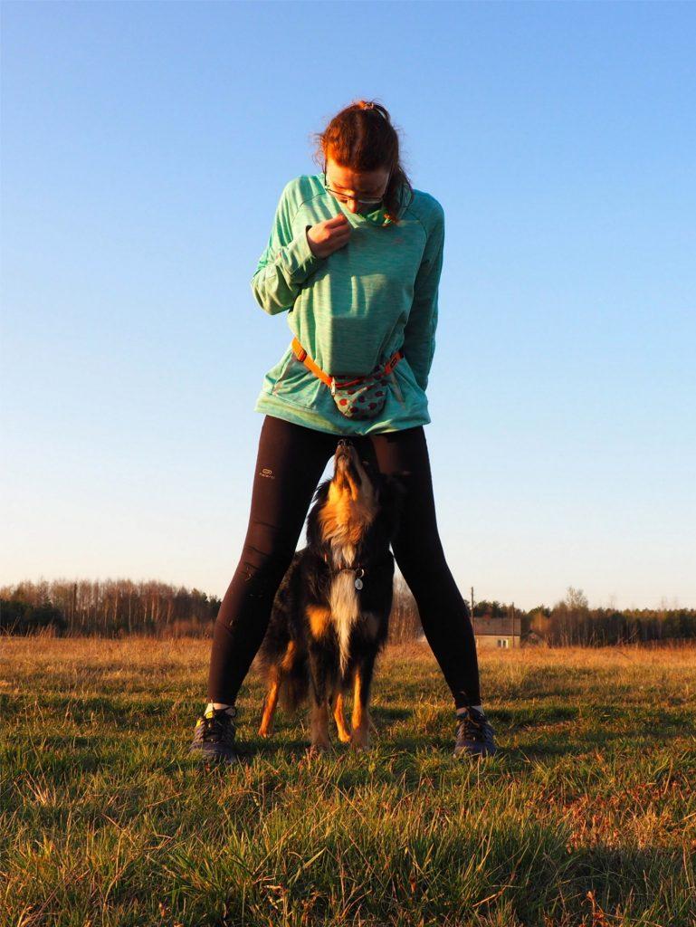 dog dancing, taniec z psem, psie sporty, sport kynologiczny, mam talent, taniec z psem zawody, dog dancing co to jest, dog dancing to music, taniec z psami