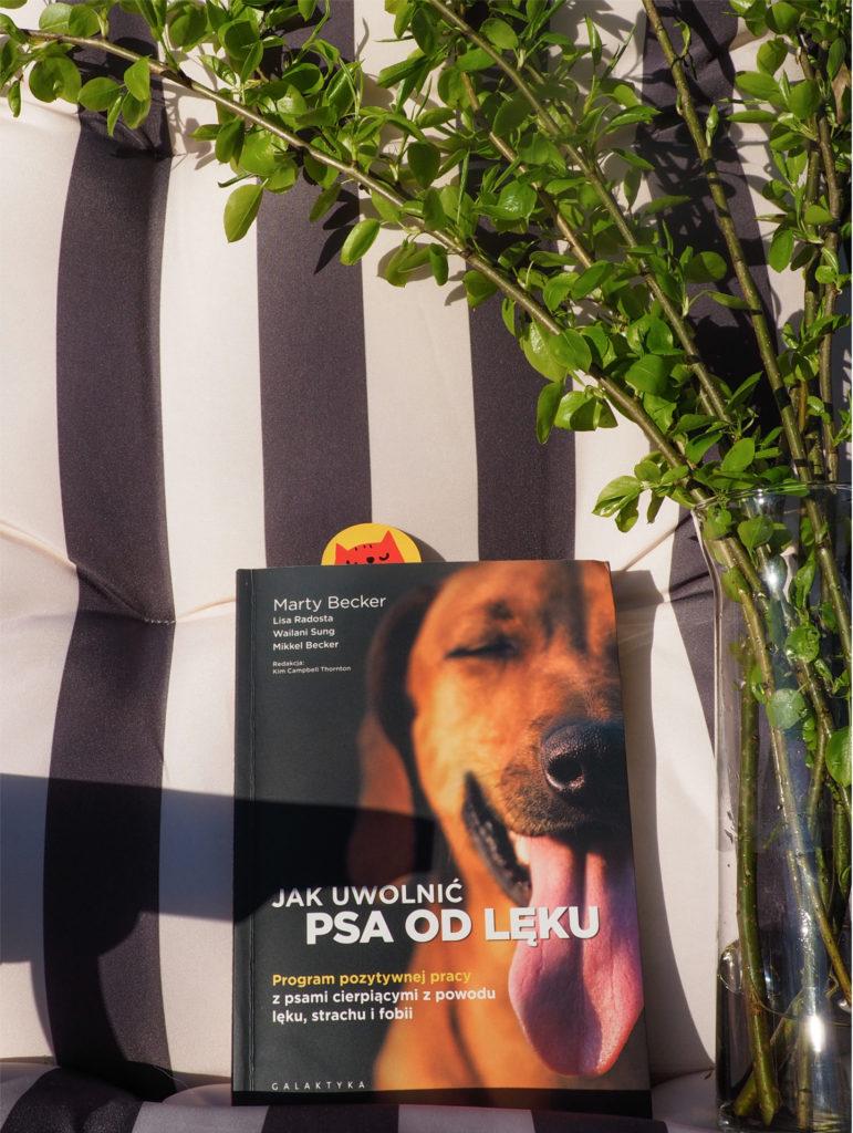 jak uwolnić psa od lęku, recenzja książki, książka o psach, książka dla psiarzy, behawiorystyka, życie z psem, psie lęki, pies problemowy